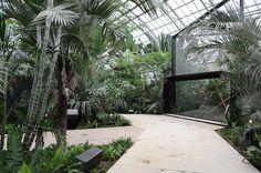 Paris Zoological Park / Bernard Tschumi Urbanists Architects + Veronique Descharrieres
