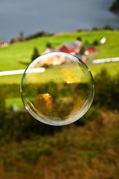 soap bubbles!