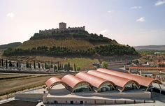 Escapadas enológicas en Ribera de Duero con Evadium, disfruta con la agencia líder todo el año de las escapadas vinícolas a Ribera de Duero