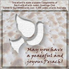 9 best free passover ecardspesach ecards images on pinterest holiday ecards ecard free shabbat shalom m4hsunfo