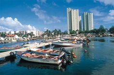 Pointe   a   Pitre City in Guadeloupe   Countrys Economic Center