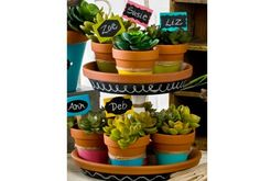 FolkArt Chalkboard Label Tiered Stand and Pots made with Handmade Charlotte Peel & Stick stencils available to buy in-store at major craft retailers #crafts #plaidcrafts #diy