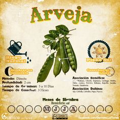 Les traemos este útil calendario de las Siembras del mes de Mayo, además de fichas con información específica de cada planta que podremos ...