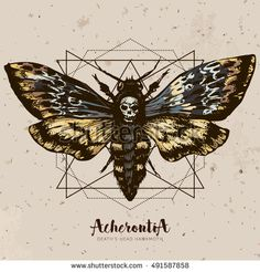 Death's-head hawk moth and sacred geometry lines. Hand drawn vector ink illustration in trendy engraved style. Moth design tattoo sketch. Vintage drawing for t-shirt print, poster, coloring book.