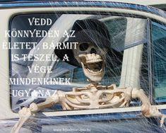 Budapest, Jokes, Humor, Movie Posters, Life, Husky Jokes, Humour, Film Poster, Memes