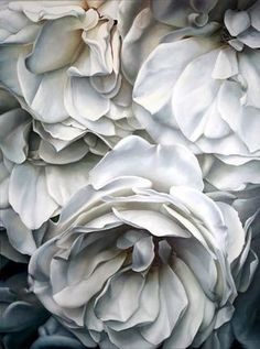 'Weiße Rosen bläulich' (White roses blue) by German painter & photographer Herman Föersterling Oil & resin oil colors on canvas, 110 x 150 cm. White Flowers, Beautiful Flowers, Beautiful Things, Colorful Roses, Blue Roses, Rose Flowers, Silver Flowers, Cut Flowers, Spring Flowers