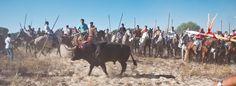 Más de 3.000 fiestas en España implican crueldad a los animales