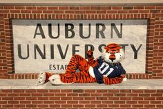 Aubie in front of the Auburn University sign on campus.