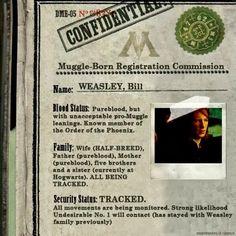 Hogwarts Alumni: Bill Weasley