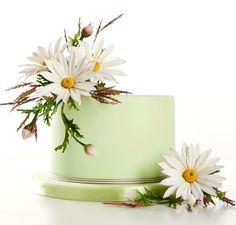 daisies :)