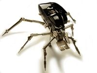 articulated antique singer insect