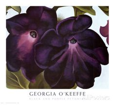 Black and Purple Petunias Art by Georgia O'Keeffe at AllPosters.com