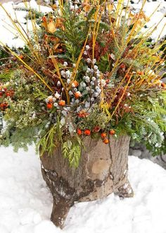 14 Cheerful Winter Container Gardens   Midwest Living