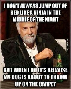 ....or my bed!!