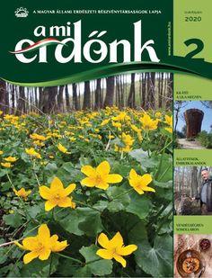 A málna tavaszi tápanyag-utánpótlása Herbs, Plants, Herb, Plant, Planets, Medicinal Plants