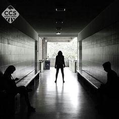 Te presentamos la selección del día: <<BLANCO Y NEGRO>> en Caracas Entre Calles. ============================  F E L I C I D A D E S  >> @calandrajr_ << Visita su galeria ============================ SELECCIÓN @marianaj19 TAG #CCS_EntreCalles ================ Team: @ginamoca @huguito @luisrhostos @mahenriquezm @teresitacc @marianaj19 @floriannabd ================ #blancoynegro #byn #bnw #Caracas #Venezuela #Increibleccs #Instavenezuela #Gf_Venezuela #GaleriaVzla #Ig_GranCaracas #Ig_Venezuela…