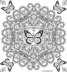 50 Best Insect Coloring Pages images | Insect coloring ...