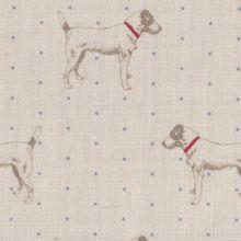 Jacks Gone Dotty fabric ~Peony and Sage