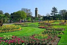 Qué es un jardín botánico?   Arkiplus