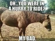 Like my horse. All the time!!