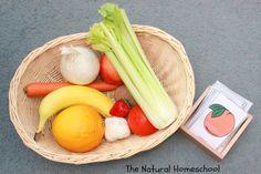 Naming, Sorting, Coloring & Matching Fruits & Vegetables {Free Printable}