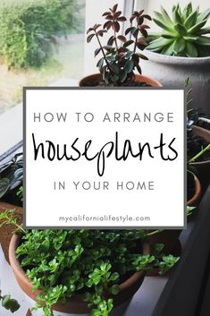 How to Arrange Houseplants in Your Home Or Apartment - House Plants Neutral Bedroom Decor, Rustic Bedroom Design, Apartment Plants, Apartment Entryway, Apartment Ideas, Apartment Living, Living Room Plants, Bedroom Plants, Hanging Plants
