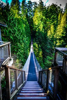 The Capilano suspended bridge in Vancouver, Canada. Vancouver, Bridge, Canada, Photography, Fotografie, Photography Business, Photo Shoot, Fotografia, Loft