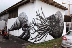 Street Art by ROA in Honolulu