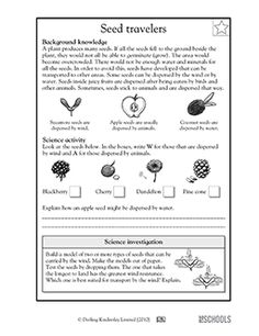 needy seeds worksheets activities greatschools homeschool biology pinterest. Black Bedroom Furniture Sets. Home Design Ideas