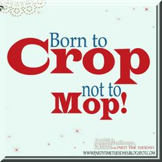 Born to Crop not to Mop!  Party Time Tuesdays Challenge Blog with Your Daily Dose of Inspiration.   Blog: http://partytimetuesdays.blogspot.com/ Facebook: https://www.facebook.com/pages/Party-Time-Tuesdays/130149147050159