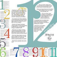 Image of Milestone Templates (1st year)