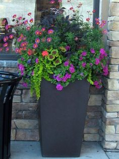 Container flowers are so pretty and you can put them in the perfect spot!!!!!!