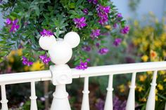 Spring in Disneyland Paris