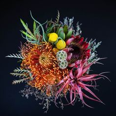 protea & bromeliad bouquet - otherworldly beauty! of course mama cringes every time dad gifts her with roses.