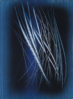 'T1962-H41' (1962) by Hans Hartung