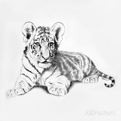 Tiger アートプリント