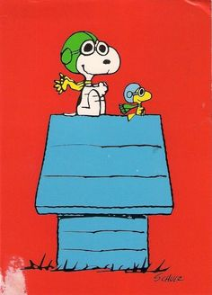 Snoopy Woodstock Fliegendes As. ❤ of Snoopy Woodstock Flying Ace. Snoopy Comics, Die Peanuts, Peanuts Snoopy, Charlie Brown Und Snoopy, Snoopy Und Woodstock, Aviation Humor, Aviation Quotes, Lucy Van Pelt, Flying Ace