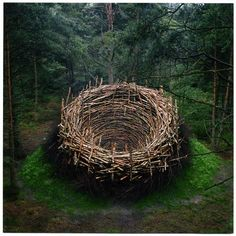 "Nils-Udo ""The Nest"", Earth, stones, birch trees, birch branches, grass, Germany, 1978"