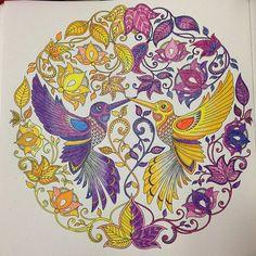 #ShareIG #컬러링북 #비밀의정원 #완료 #coloriage #coloringbookforadults #jardinsecret #finish 마무리 지음 / 아- 마음에 안든다