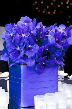 Mood Flowers