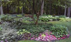 Home is on Genesee County MG Garden Tour 2016 http://gcgardentour.weebly.com/