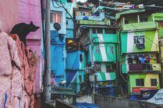 Favela Santa Marta tour, Rio de Janeiro