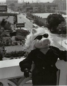 Miss Piggy   The Coveteur