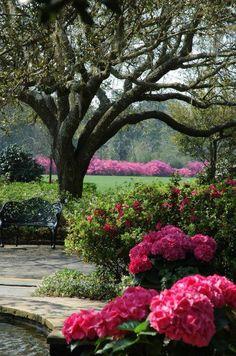 Grumpy Gardener: Bellingrath Gardens in Theodore, Alabama