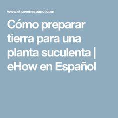 Cómo preparar tierra para una planta suculenta | eHow en Español