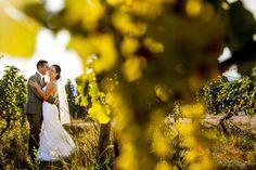 Summerhill Pyramid Winery Wedding 009