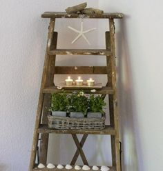 We could do this with the ladder matt managed to get
