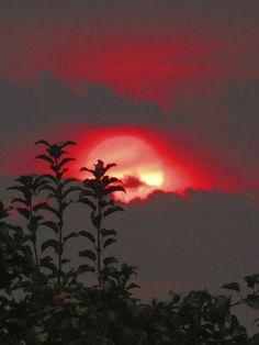 "justemoinue2: ""Smoky Sunset, Yakima, WA """
