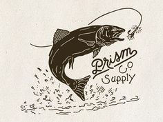 Trout by Michael Adams (Chicago, IL) Fishing World, Fly Fishing, Fish Logo, Fish Illustration, La Art, Fish Design, Lettering Design, Trout, Bad Boys
