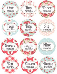 Monthly Baby Age Stickers Floral Shabby Chic Age by GetHappyDesign